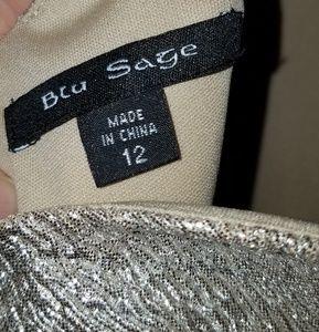 Blu Sage Dresses - Blu Sage metallic gown size 12